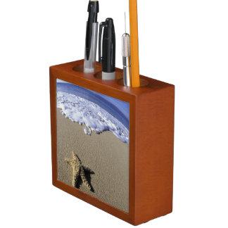 USA, Hawaii, Maui, Makena Beach, Starfish and Pencil Holder