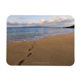 USA, Hawaii, Maui, Wailea, footprints on beach 2 Magnet