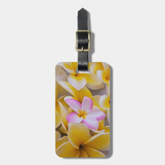 USA, Hawaii, Oahu, Plumeria flowers in bloom 1 Luggage Tag