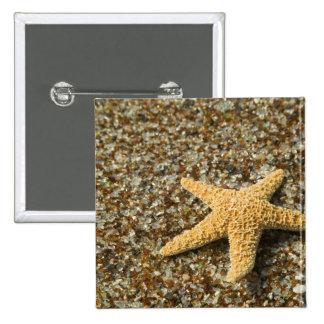 USA, HI, Kauai, Glass Beach with Star fish 2 Inch Square Button