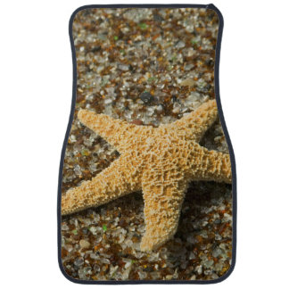 USA, HI, Kauai, Glass Beach with Star fish Car Mat