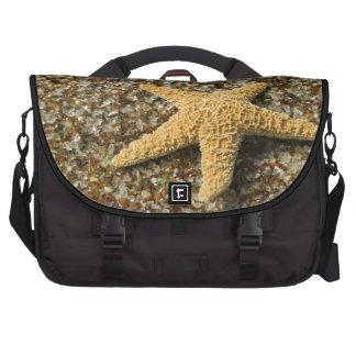 USA, HI, Kauai, Glass Beach with Star fish Laptop Computer Bag