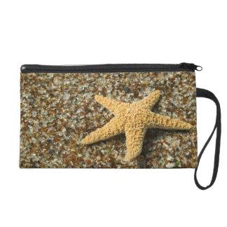 USA, HI, Kauai, Glass Beach with Star fish Wristlet Clutch