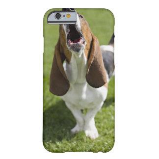 USA, Illinois, Washington, Portrait of Bassett Barely There iPhone 6 Case