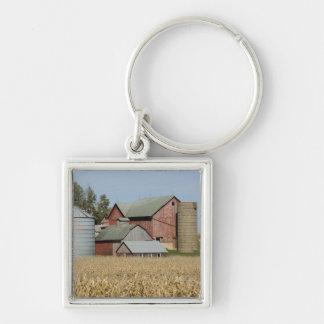 USA, IOWA, Froelich: Old farm Key Chain