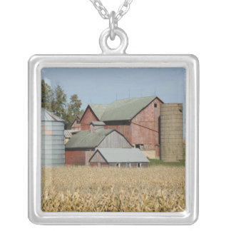 USA, IOWA, Froelich: Old farm Silver Plated Necklace