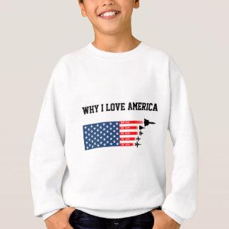 USA jet fighter aircraft: Reasons to love America Sweatshirt