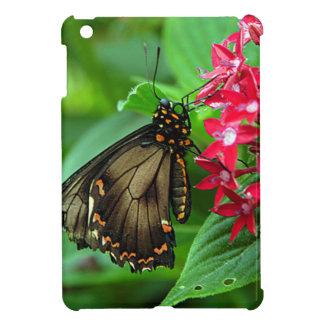 USA, Kansas, Butterfly On Red Flowers iPad Mini Case