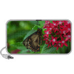 USA, Kansas, Butterfly On Red Flowers Travel Speaker
