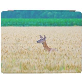 USA, Kansas, White Tail Doe Crossing Wheat iPad Cover