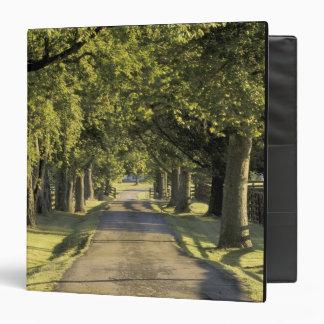USA, Kentucky, Lexington. Tree-lined driveway, Vinyl Binders