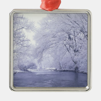 USA, Kentucky, Louisville. Snow covered Silver-Colored Square Ornament