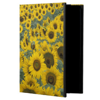 USA, Kentucky Pattern in field of cultivated iPad Air Cover