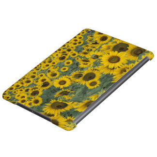 USA, Kentucky Pattern in field of cultivated iPad Air Covers