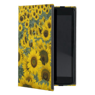 USA, Kentucky Pattern in field of cultivated iPad Mini Cases