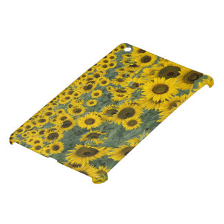 USA, Kentucky Pattern in field of cultivated iPad Mini Covers