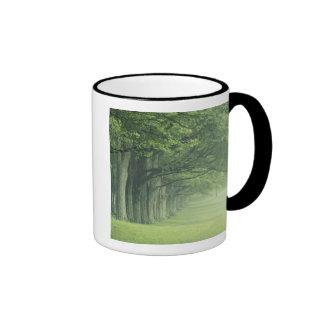 USA, Kentucky. Row of trees in spring Ringer Coffee Mug
