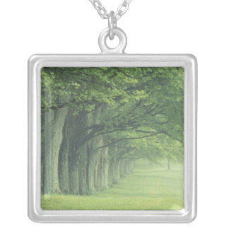 USA, Kentucky. Row of trees in spring Square Pendant Necklace