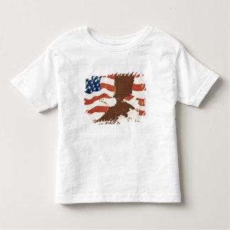 USA, Louisiana, Port Allen. Patriotic mural Shirts