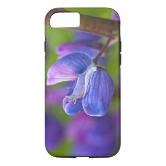 USA, Maine, Acadia National Park. Close-up of iPhone 7 Case