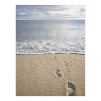 USA, Massachusetts, Cape Cod, footprints on Postcard