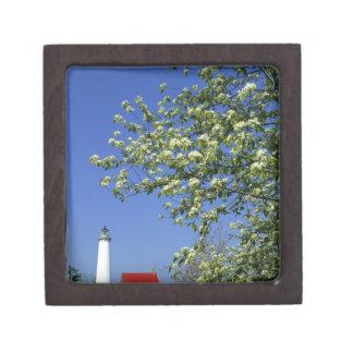 USA, Michigan, East Tawas. Tawas Lighthouse with Premium Trinket Box