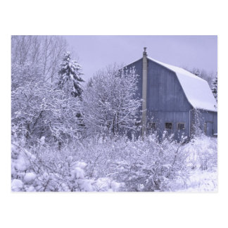 USA, Michigan, Rochester Hills. Snowy blue Postcard