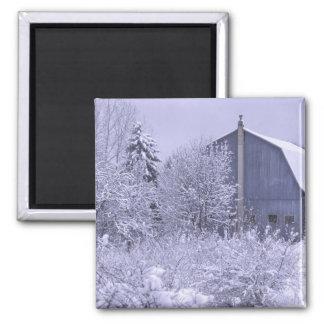 USA, Michigan, Rochester Hills. Snowy blue Square Magnet