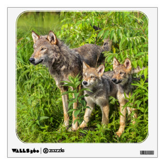 USA, Minnesota, Sandstone, Minnesota Wildlife 12 Wall Decal