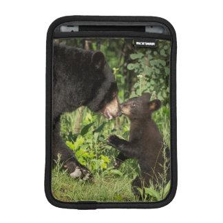 USA, Minnesota, Sandstone, Minnesota Wildlife 13 iPad Mini Sleeve