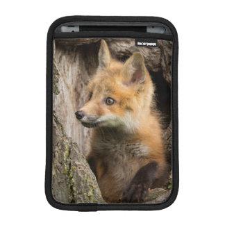 USA, Minnesota, Sandstone, Minnesota Wildlife 14 iPad Mini Sleeves