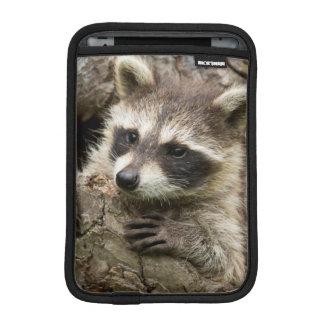 USA, Minnesota, Sandstone, Minnesota Wildlife 16 iPad Mini Sleeve