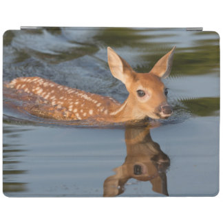 USA, Minnesota, Sandstone, Minnesota Wildlife 19 iPad Cover