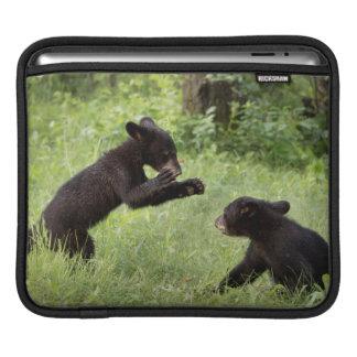 USA, Minnesota, Sandstone, Minnesota Wildlife 22 iPad Sleeves