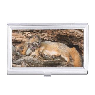 USA, Minnesota, Sandstone, Minnesota Wildlife 23 Business Card Holder