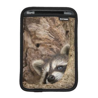 USA, Minnesota, Sandstone, Minnesota Wildlife 3 iPad Mini Sleeve