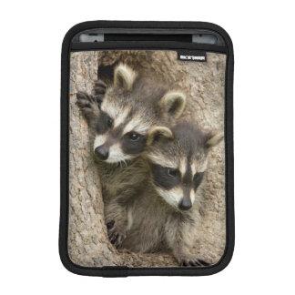 USA, Minnesota, Sandstone, Minnesota Wildlife 7 iPad Mini Sleeves
