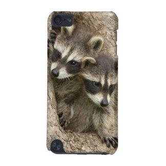 USA, Minnesota, Sandstone, Minnesota Wildlife 7 iPod Touch 5G Cases