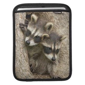 USA, Minnesota, Sandstone, Minnesota Wildlife 7 Sleeves For iPads
