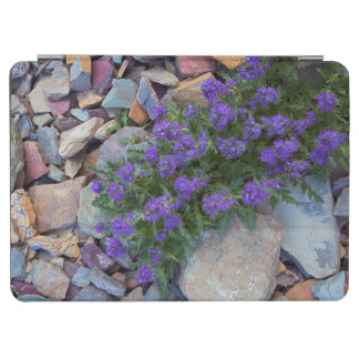 USA, Montana, Glacier National Park iPad Air Cover