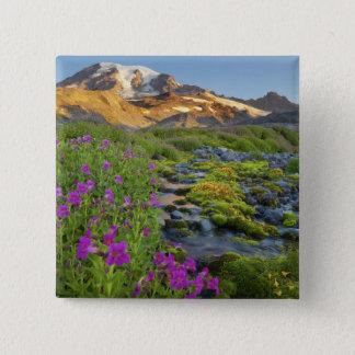 USA, Mt. Rainier National Park, Washington. 2 Inch Square Button