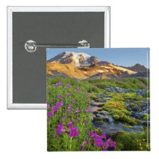 USA Mt Rainier National Park Washington Buttons