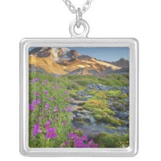 USA, Mt. Rainier National Park, Washington. Jewelry