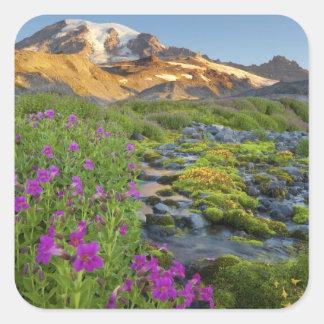 USA, Mt. Rainier National Park, Washington. Square Sticker
