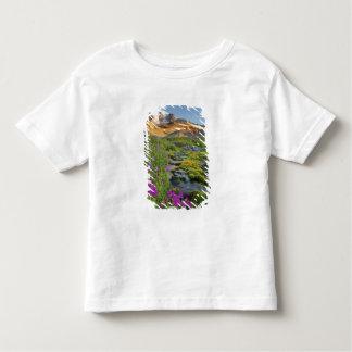 USA, Mt. Rainier National Park, Washington. Tshirt