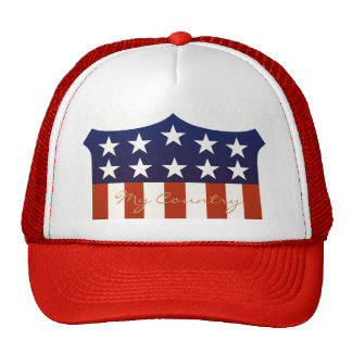 USA My Country Trucker Hat