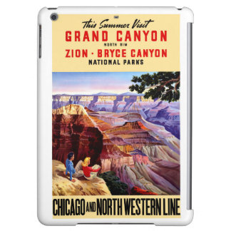USA National Parks Vintage Poster Restored iPad Air Cases