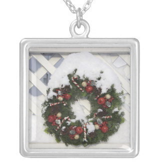 USA, New England, Massachusetts, Reading, Silver Plated Necklace