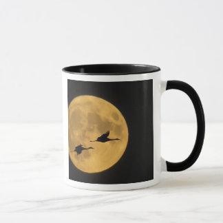USA, New Mexico, Bosque del Apache National Mug