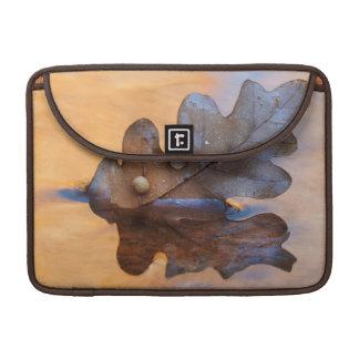 USA, New Mexico. Oak leaf in stream Sleeve For MacBooks